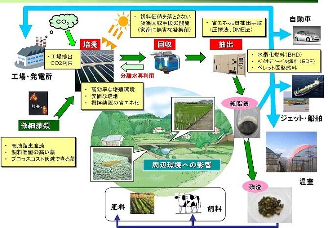 原山研究室 | 地域活性化のためのバイオマス利用技術の開発